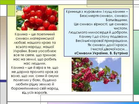 М. києва